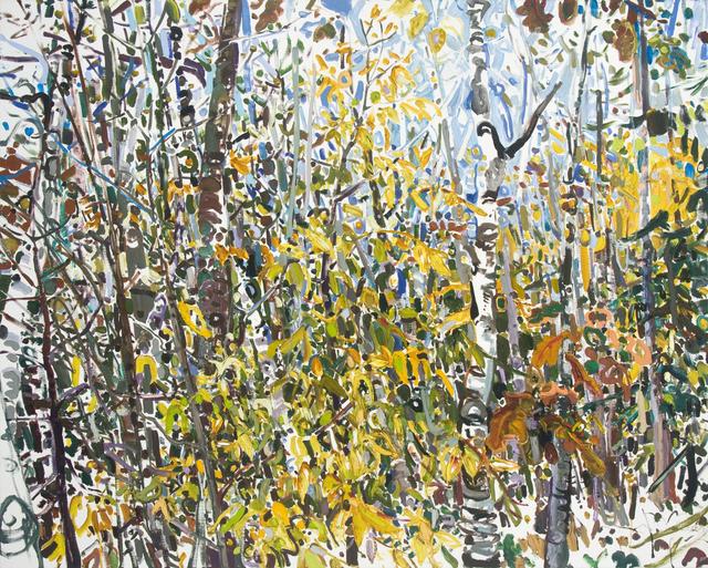 Lilian Garcia-Roig, 'Fleeting Fall', 2008, Valley House Gallery & Sculpture Garden
