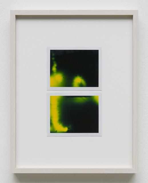 , 'Photuris #26,' 2013, Galerie Crone