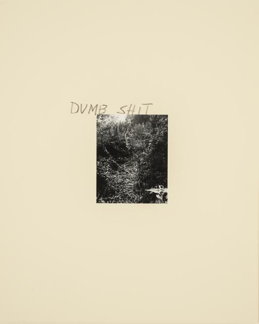 , 'Dumb Shit ,' 1989, Casemore Kirkeby