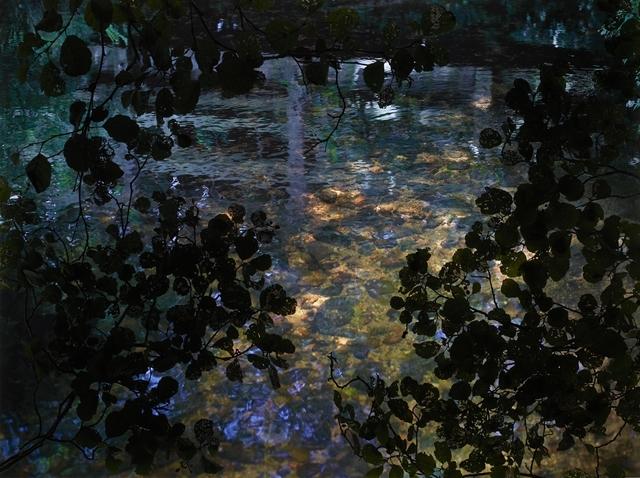 , 'Alder Brook 1,' 2011, Osborne Samuel
