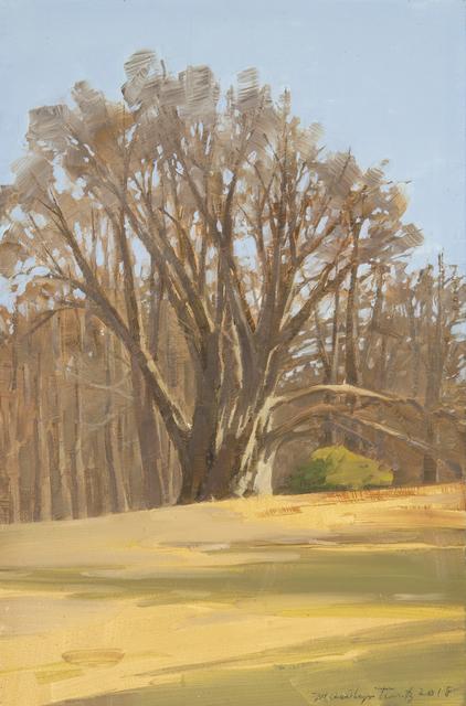 Marilyn Turtz, 'Old Tree', 2019, Dowling Walsh