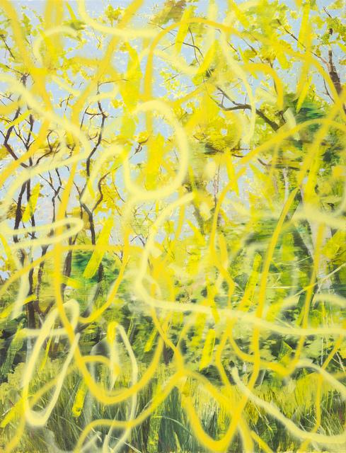 Una URSPRUNG, 'Untitled 34', 2017, Liang Gallery