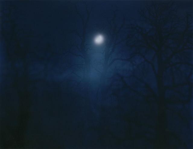 Nicholas Hughes, 'In Darkness Visible [Verse I] no. 12', 2007, Dellasposa
