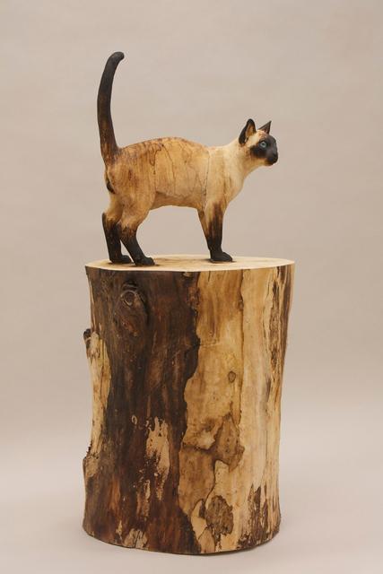 , 'Schrödinger's cat,' 2015, 3 Punts Galeria