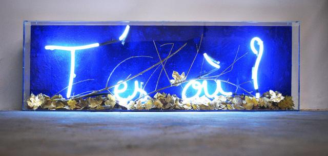 , 'T'es où ?,' , Galerie Olivier Waltman | Waltman Ortega Fine Art