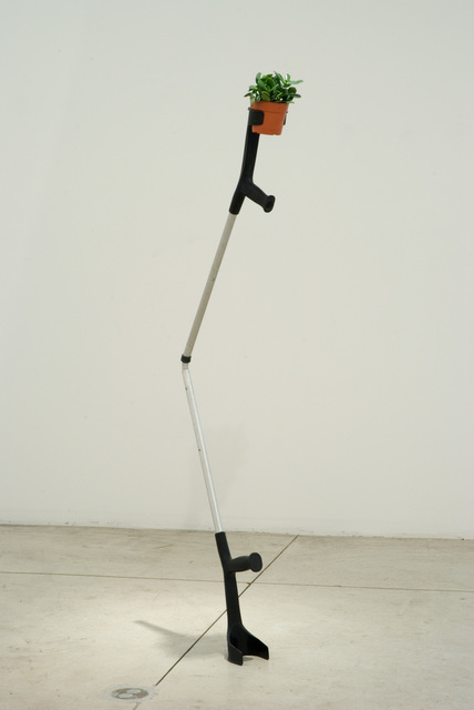 Jaime Pitarch, 'Vegetable with Prosthesis', 2009, Spencer Brownstone Gallery