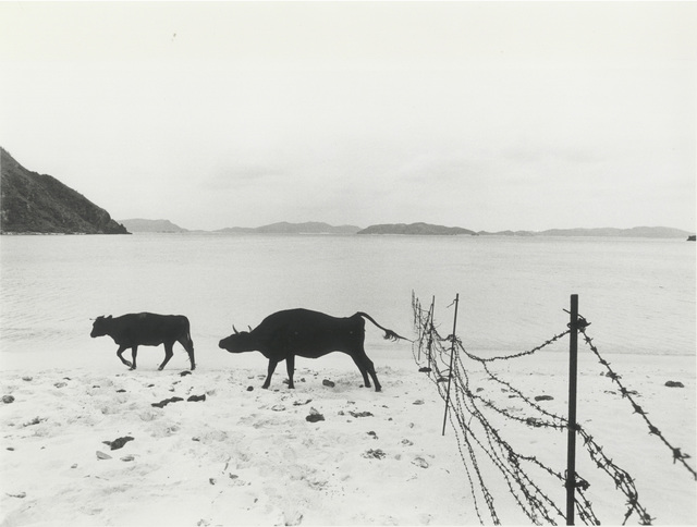 , 'Tokashiki Island,' 1972, Misa Shin Gallery