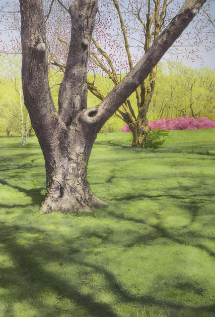 , 'Tree with Red Buds and Pink Bushes,' , Pucker Gallery