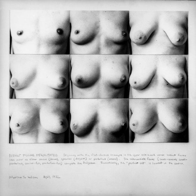 , 'Breast Forms Permutated,' 1972/2008, mfc - michèle didier