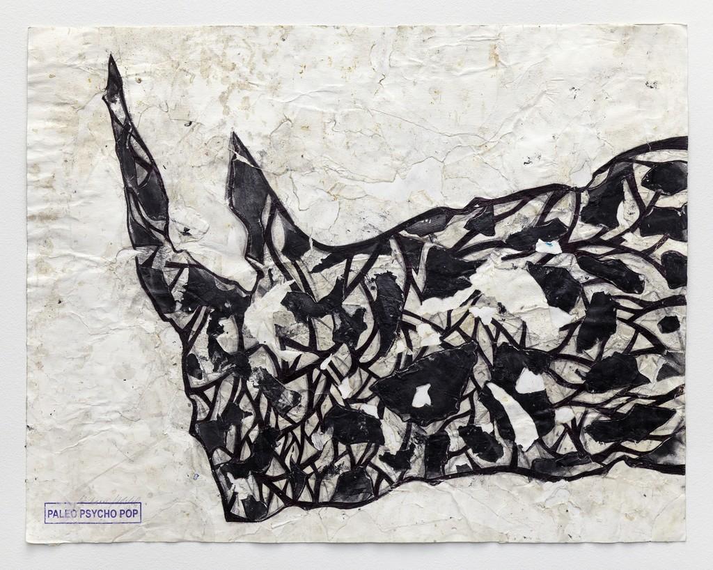 Rhinoscimento