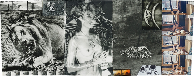 Peter Beard, 'Untitled', 1972-1984, Phillips