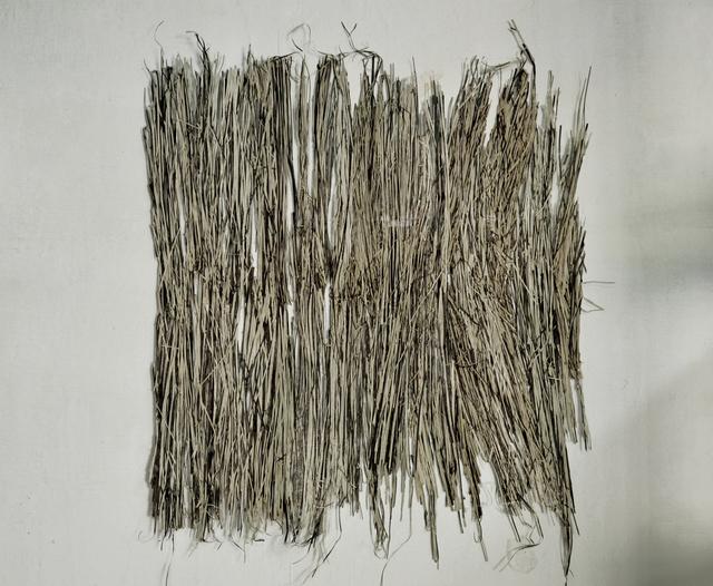""", 'De la serie """"Lineal"""",' 2015, Galería Sextante"""