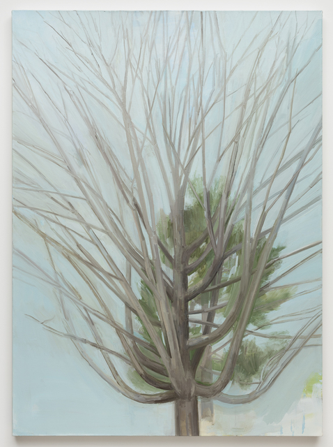 , 'The Winter Maple Tree,' 2016, Alexander and Bonin