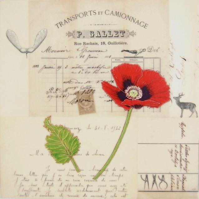 , 'Red Poppy #6,' , Gail Severn Gallery