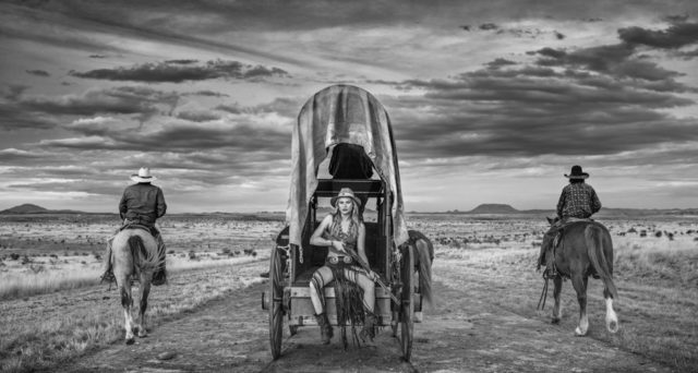 David Yarrow, 'Amarillo By Morning', 2020, Photography, Digital Pigment Print on Archival 315gsm Hahnemuhle Photo Rag Baryta Paper, Isabella Garrucho Fine Art