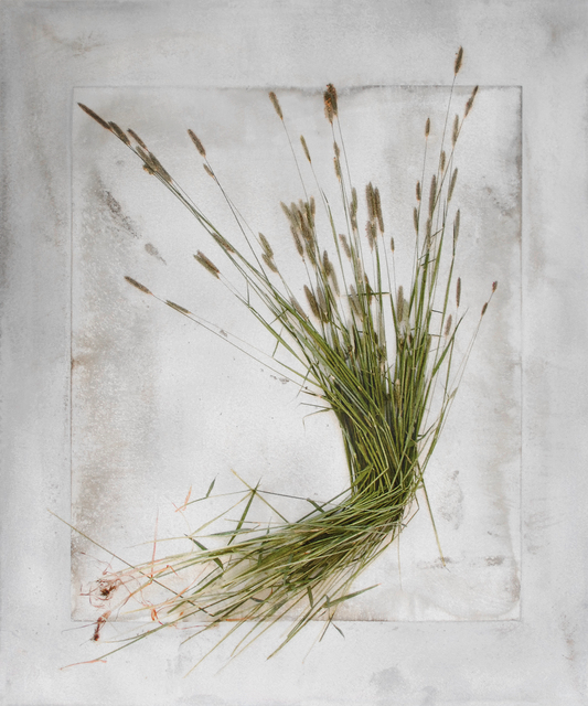 , 'Bent Grass,' 2018, Schmidt Dean Gallery