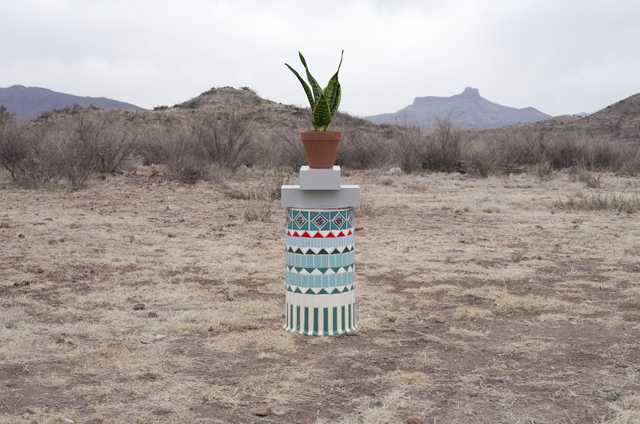 , 'Local Plants (Snake Plant),' 2012, Sies + Höke