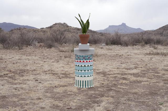 Florian Slotawa, 'Local Plants (Snake Plant)', 2012, Sies + Höke