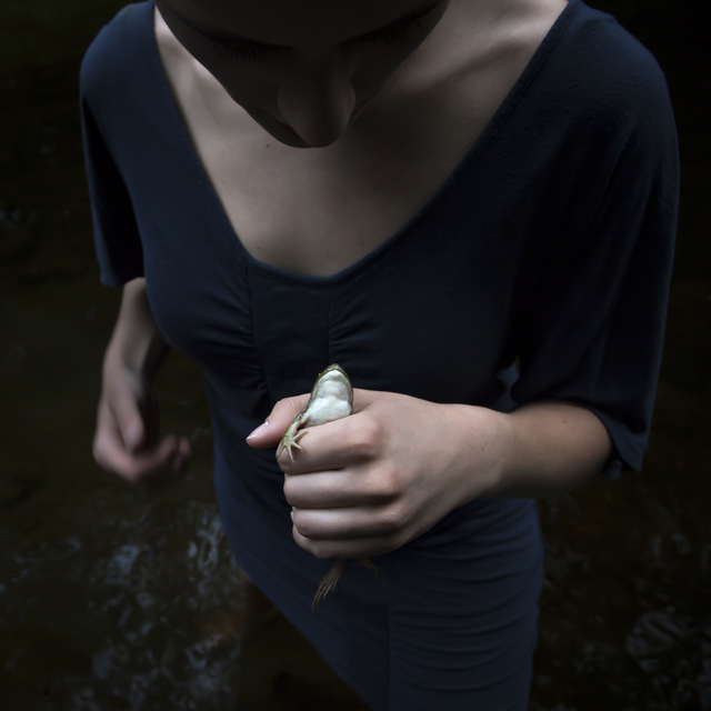 , 'The Frog,' 2013, photo-eye Gallery