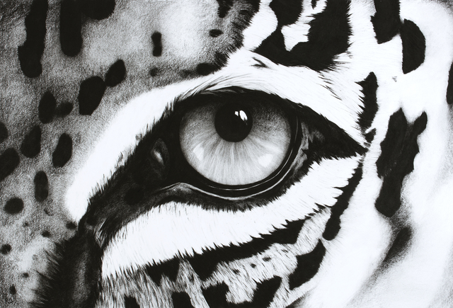 , '10. Black and White Abstract Leopard Eye,' , Sladmore Contemporary