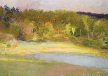 Ben's Pond, Midsummer