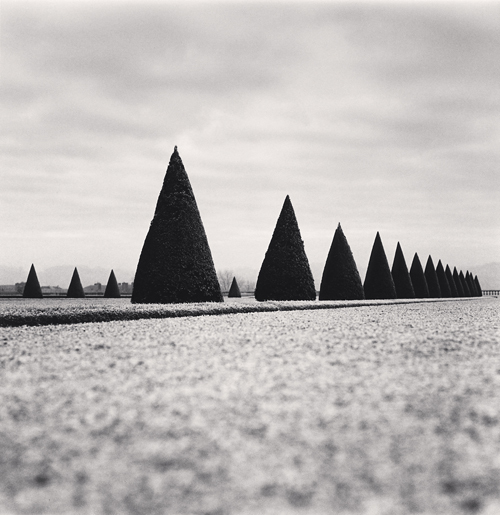 , 'Eighteen Hedges, Versailles, France,' 1998, PDNB Gallery