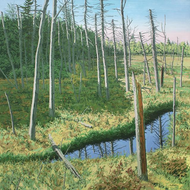 , 'Marsh Shadow,' 1984, Alexandre Gallery