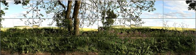 David Hockney, 'SevenYorkshire Landscapes', 2011, Annely Juda Fine Art