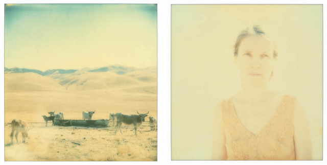 Stefanie Schneider, 'Oilfields, diptych', 2004, Photography, Analog C-Print, hand-printed by the artist, mounted on milk Plexi with matte UV-Protection, Instantdreams