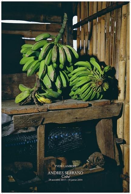 , 'Platanos, Home of Rafael, Playa Duaba, Baracao (Cuba),' 2012, Galerie Nathalie Obadia