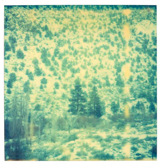 Stefanie Schneider, 'Magic Mountain I (Memories of Green)', 2003, Photography, Analog C-Print, hand-printed by the artist on Fuji Crystal Archive Paper, based on a Polaroid, not mounted, Instantdreams