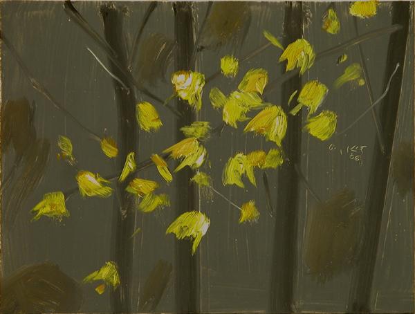 , 'Yellow Leaves #5,' 2006, Rosenbaum Contemporary