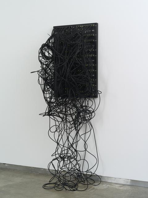 Addie Wagenknecht, 'Kilohydra 1', 2013, bitforms gallery