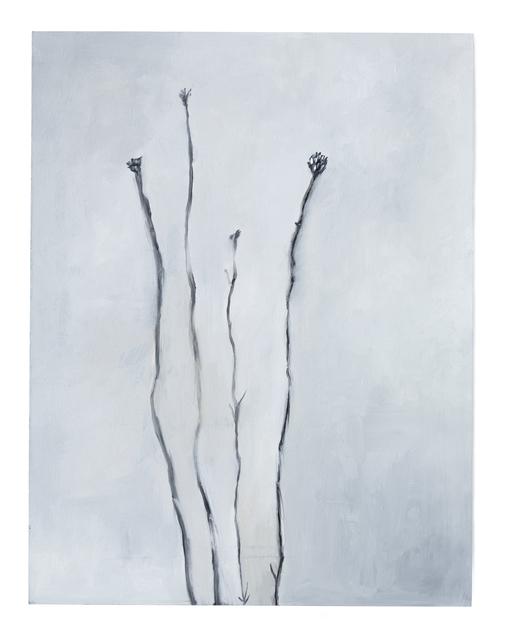 , 'Untitled,' 2016, Casa Nova Arte e Cultura Contemporanea