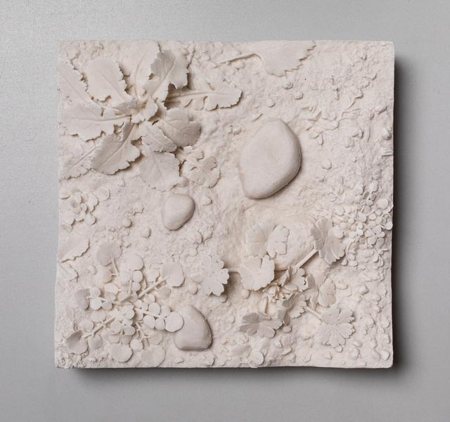 , 'Patch of Ground, Henbit,' 2019, Mindy Solomon Gallery
