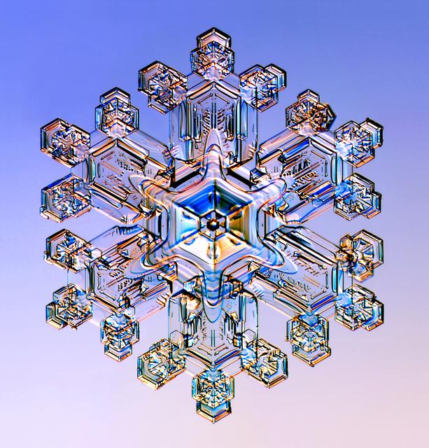 , 'Snowflake #4,' 2016, Richard Levy Gallery