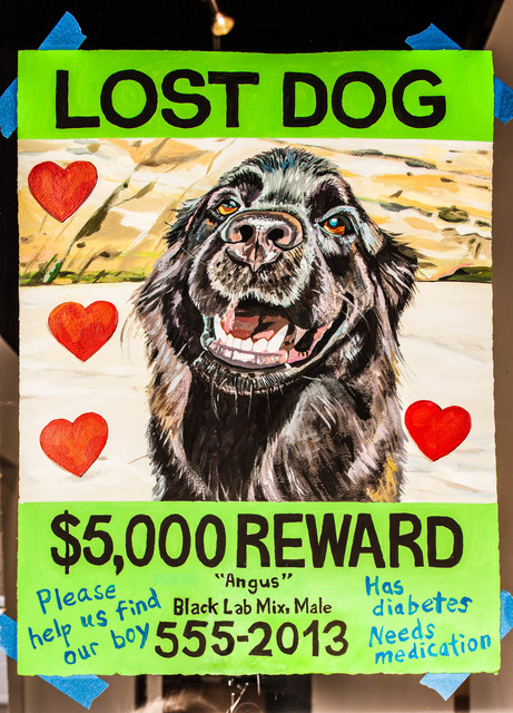 , 'Ephemera (Lost Dog),' 2013, Rosamund Felsen Gallery
