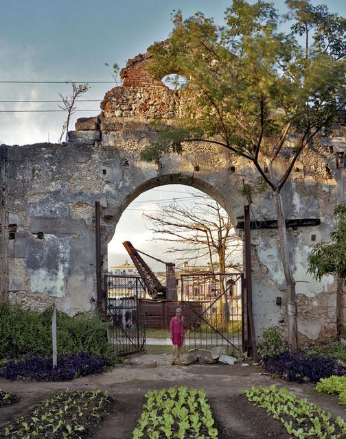 Andrew Moore, 'Un huerto familiar en un antiguo almacen, Rio San Juan, Matanzas', 2012, Yancey Richardson Gallery