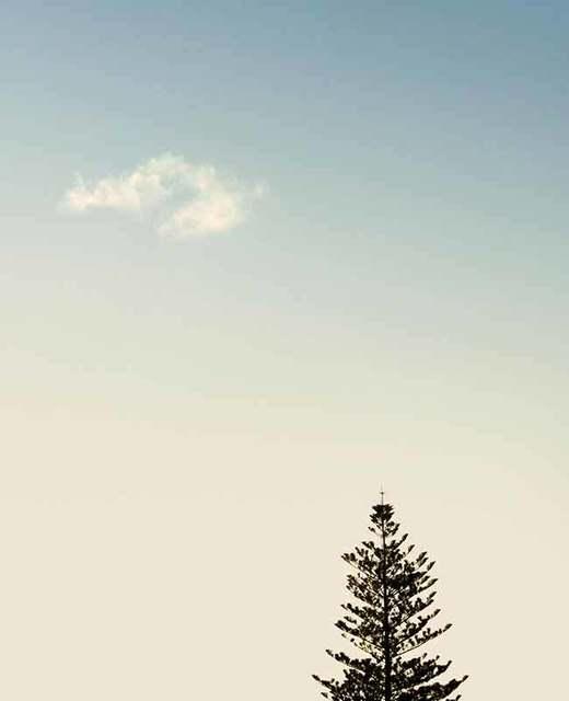 , 'Cabarita Beach 2016,' , OLSEN GALLERY