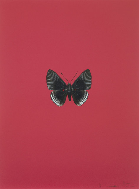 Damien Hirst, 'It's a Beautiful Day', 2013, DTR Modern Galleries