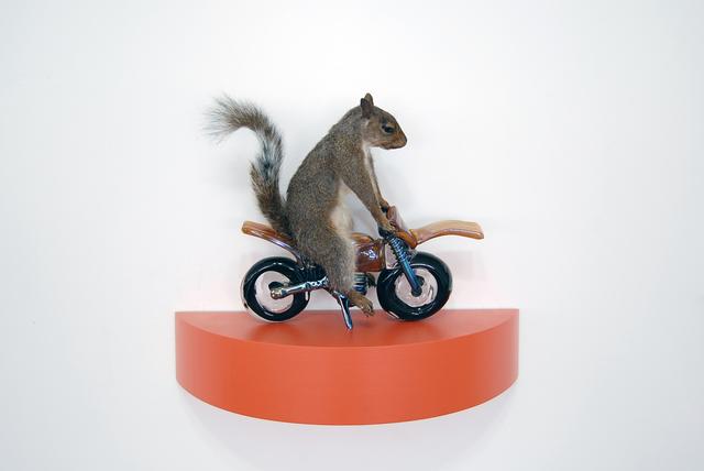 , 'The Squirrels - orange,' 2018, Exhibit A