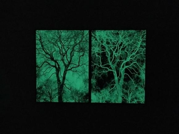, 'Darkness & Light,' 2017, Stoney Road Press