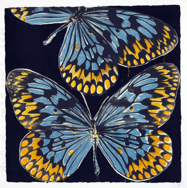 , 'Monarchs, Jan 25, 2006,' 2017, Maune Contemporary