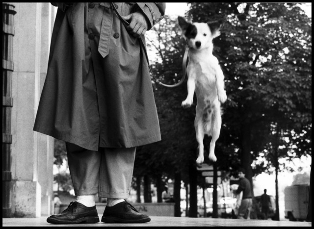 , 'Paris, France. ,' 1989, Magnum Photos