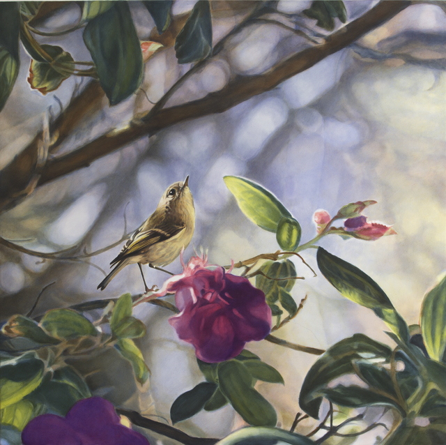 , 'Ruby Crowned Kinglet I,' , Gail Severn Gallery