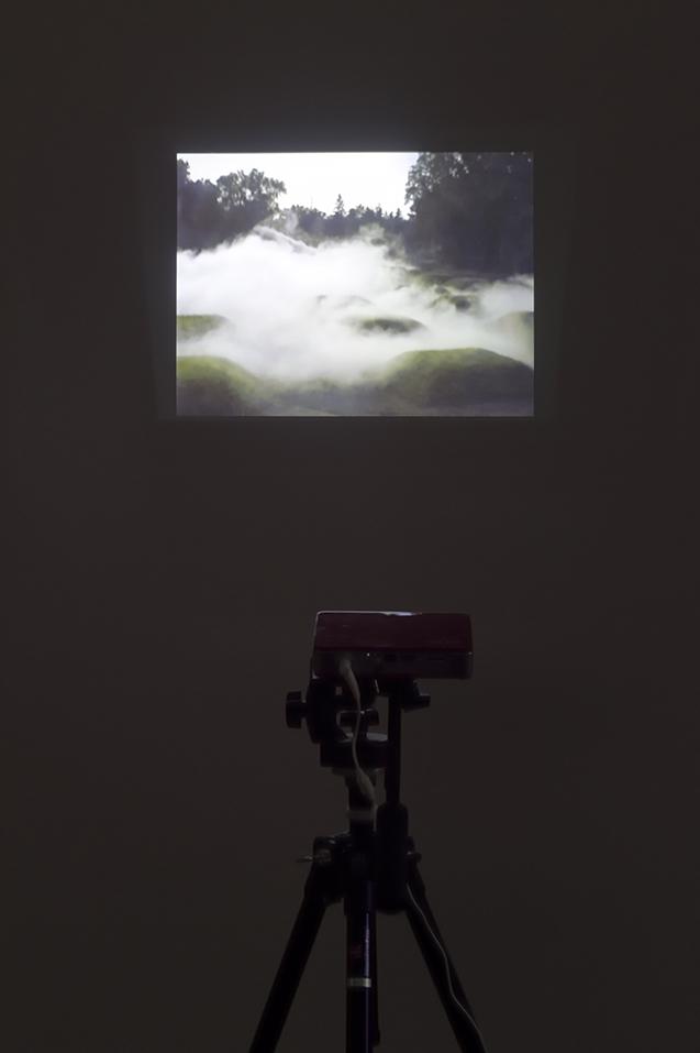 Foggy Forest Fog Environment #47660 Showa Kinen Park, Tachikawa, Tokyo, 1992