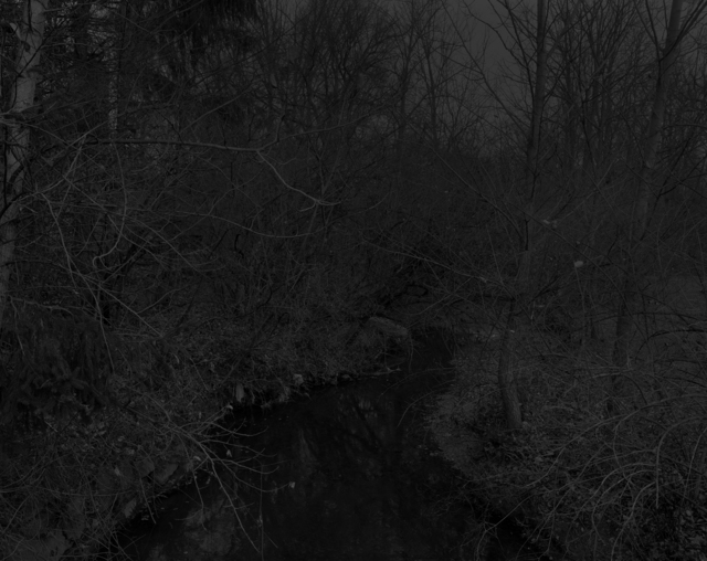 , 'Night Coming Tenderly, Black: Untitled #19 (Creek and Trees),' 2017, Rena Bransten Gallery
