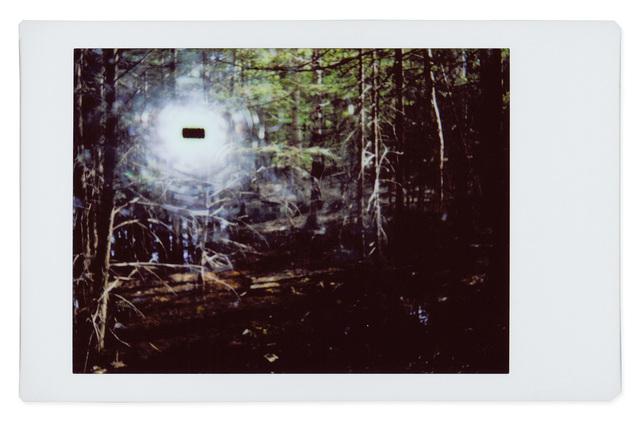 , 'Alien 2,' 2017, Robert Klein Gallery