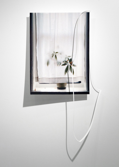 , 'Crop Window,' 2016, Daniel Faria Gallery