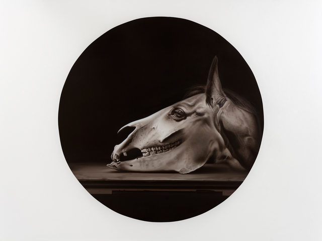 , 'Flogging Baroque Horse,' 2017, Parafin